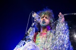 flaminglips03
