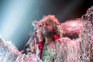 flaminglips04