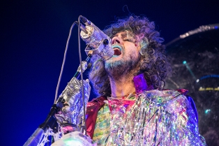 flaminglips10